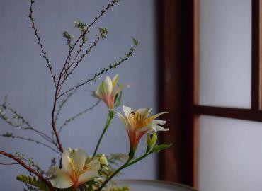 日本花道之小原流盛花课程