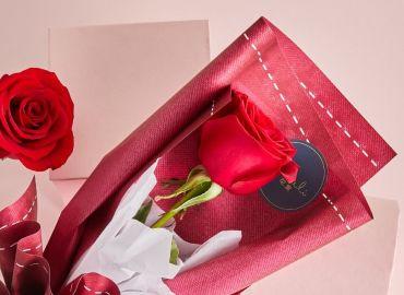 【零基础花艺学习】单枝玫瑰简单包装,疫情期间,在家学习就是给社会做出贡献!
